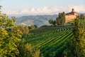 The langhe near barolo piedmont north italy Royalty Free Stock Image