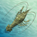 Langouste illustration with sea crayfish in the shoal waters drawn in cartoon style Stock Photos