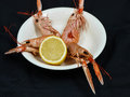 Langoustine prepared on a white plate with lemon towards black background Royalty Free Stock Photos
