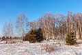 Lanscape in frozen day winter Stock Photo