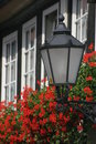 Lantern with geraniums Royalty Free Stock Photography