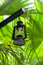 Lantern in lush green garden Royalty Free Stock Photography