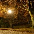 Lantern in the park Stock Image