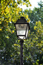 Lantern on a street tree lined in paris france Royalty Free Stock Photo