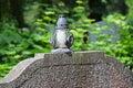 Lantern on the tombstone in cemetery Stock Photos