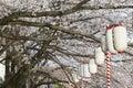 Lanterns in sakura festival tokyo japan at walkway ooyokogawa river Stock Image