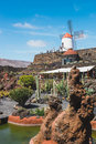 View of cactus garden with white windmill in Guatiza, popular attraction in Lanzarote, Canary islands