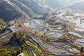 Laohuzui terraced field scenic area in yuanyang yunnan of china yuanyang county simplified chinese å…ƒé˜ åž traditional Stock Image