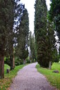 Lapidary park pathway with ancient roman remains through the cypress trees location aquileia friuli venezia giulia region fvg Royalty Free Stock Photography
