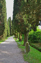 Lapidary park pathway with ancient roman remains through the cypress trees location aquileia friuli venezia giulia region fvg Stock Photography