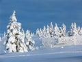 image photo : Lapland