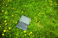 Laptop in grass Royalty Free Stock Photo