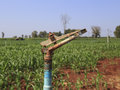 A large agriculture sprinkler wetting a newly planted corn field Stock Images