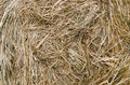 Large bail of hay close up shot a Royalty Free Stock Photography