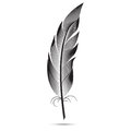 A large black and white feather. graphic arts Royalty Free Stock Photo