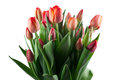 A Large Bouquet Of Red Tulips ...