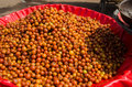 A large bowl of ber fruit ziziphus mauritiana for sale in a market in hyerabad andhra pradesh india known in england as jujube it Stock Photo