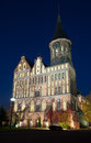 Large cathedral in kaliningrad the night Royalty Free Stock Photo