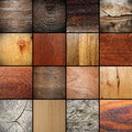 Large collection of wood textures Royalty Free Stock Photo