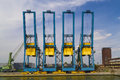 Large container cranes in Port of Antwerp Royalty Free Stock Photo