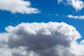 A large Cumulus cloud in the blue sky. In the top left corner flies a little gull. Royalty Free Stock Photo