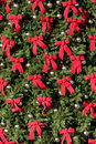 Large Evergreen With Red Bows Royalty Free Stock Photos