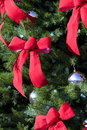 Large Evergreen With Red Bows Stock Photography