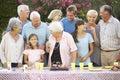 Large Family Group Celebrating Birthday Outdoors Royalty Free Stock Photo