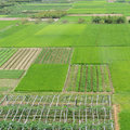 Large green farm land high angle view of in china Royalty Free Stock Photo