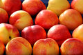 Large group of nectarines fresh Stock Photo