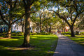 Large oak trees and spanish moss along a path in forsyth park s savannah georgia Stock Image