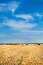 Large Piles of Hay Bales Royalty Free Stock Photo