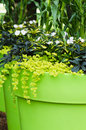 Large plant pots with flowers in the garden close up Royalty Free Stock Photo