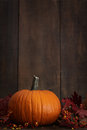Large pumpkin with leaves against a wood background Stock Photos