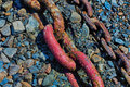 Large Red Chain Links used in a Dry dock Shipyard Royalty Free Stock Photo