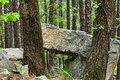 Large rock slab resting on another rock in wooded area Royalty Free Stock Photo