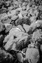 Large rocks random pattern of lying on the ground black and white monochrome Stock Image