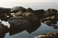 Large rocks on sea shore Stock Photography