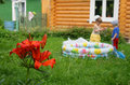 Large-scaled red lily and summer childrens  Stock Image