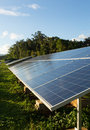 Large solar power installation in tropics industrial panels hot tropical environment Royalty Free Stock Photography