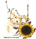 Large Sunflower Vector Illustration Stock Photo