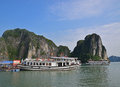 Large tourist junk boats docking at fishing village in halong bay most tourists stop here to take the small bamboo boat exploring Stock Image