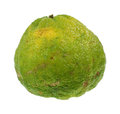 Large uniq fruit rough textured skin Royalty Free Stock Photos
