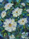 Large white field summer flowers, oil painting Royalty Free Stock Photo