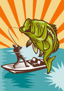 Largemouth Bass Fishing Royalty Free Stock Image