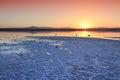 Larnaca Salt Lake Royalty Free Stock Photo