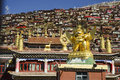 Larong wuming s buddhist college in seda located the ganzi tibetan autonomous prefecture county sichuan province meters Stock Photography