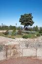 Las ruinas de la ciudad antigua en de chersonese Fotos de archivo libres de regalías