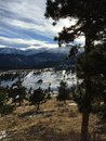 Las sombras los árboles y las nubes largos sobre nieve capsularon picos de montaña Foto de archivo libre de regalías