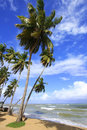 Las terrenas beach samana peninsula dominican republic Royalty Free Stock Photography